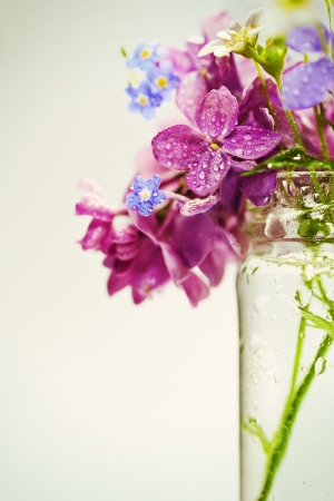 Beautiful spring flowers in a vase on white background Stock Photo - 19009095