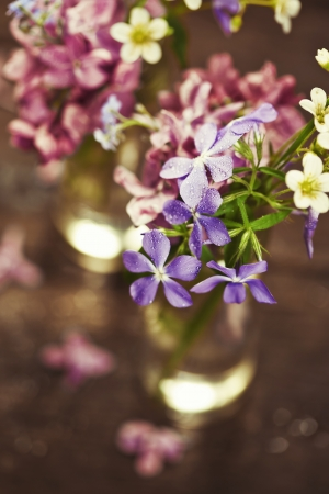 Bouquet of spring flowers on wooden background Stock Photo - 19009141