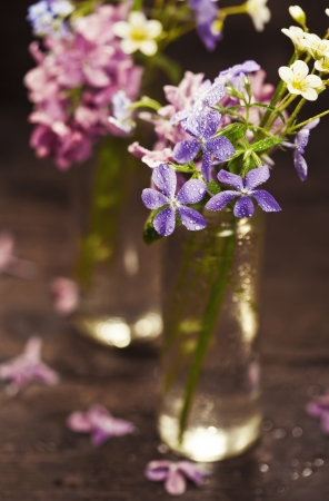 Bouquet of spring flowers on wooden background Stock Photo - 19009133