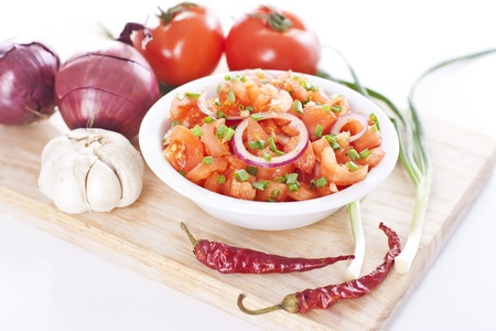 Bowl of tasty salsa made from fresh tomatoes, onion and garlic Stock Photo - 19009093