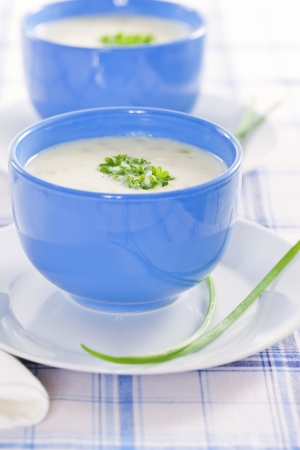 Vegetable cream soup in blue bowls Stock Photo - 19009073