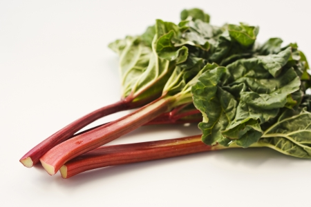 rhubarb: Fresh rhubarb on white background Stock Photo