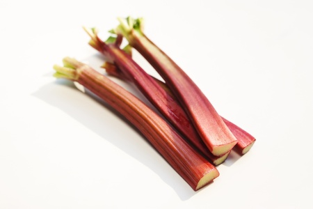 Fresh rhubarb on white background photo