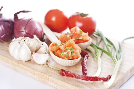 Tasty salsa made from fresh tomatoes, onion and garlic Stock Photo - 19009057
