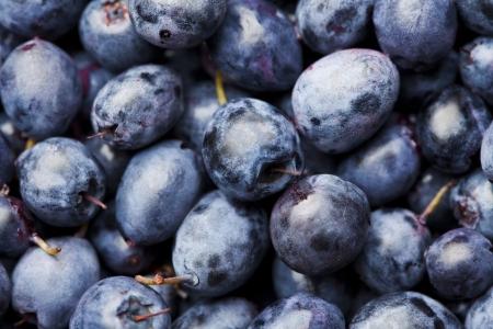 Fresh ripe blueberry background Stock Photo - 21702815