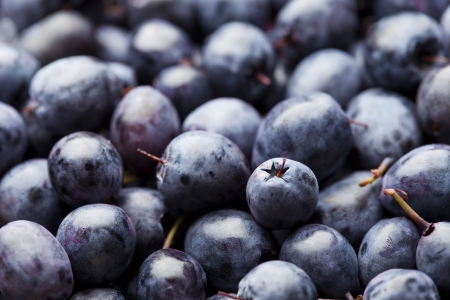 Fresh ripe blueberry background Stock Photo - 21702816