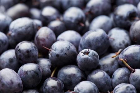 Fresh ripe blueberry background Stock Photo - 21702816