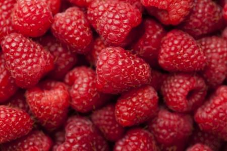 Red ripe fresh raspberry background Stock Photo - 21702839