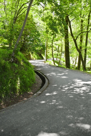 Road in the green summer park Stock Photo - 21702841