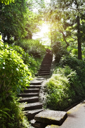 Stone stairs in summer park Stock Photo - 21702843