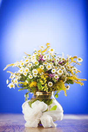 Wildflowers bouquet in glass vase on blue background photo