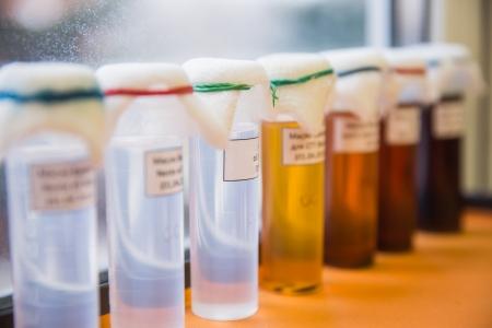 set of Laboratory Glassware with liquids Stock Photo