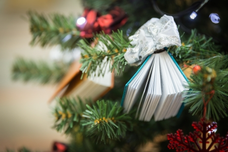 Christamas tree decoration with two small books photo