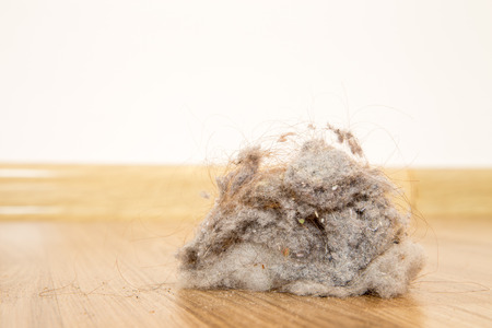 brooming: a lot of dust on a wooden floor Stock Photo