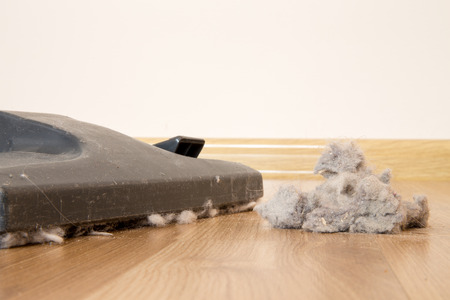vacuum cleaner and dust on a wooden floor photo