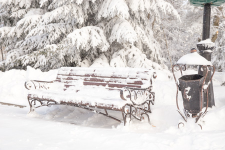 Wooden bench covered with snow in a winter park photo
