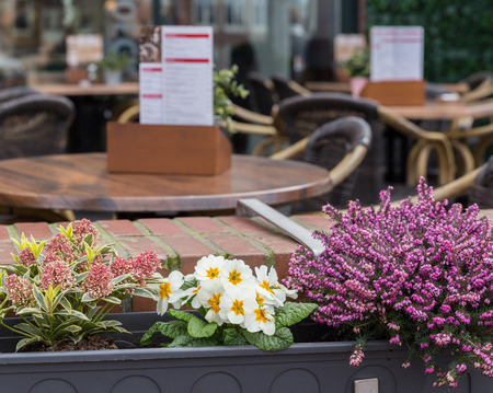outdoor cafe: Beautiful flowers in an open-air small cafe Stock Photo