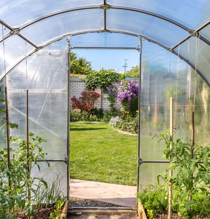 View from greenhouse on beautiful formal garden photo