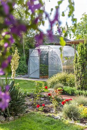 Greenhouse in back garden with open door photo