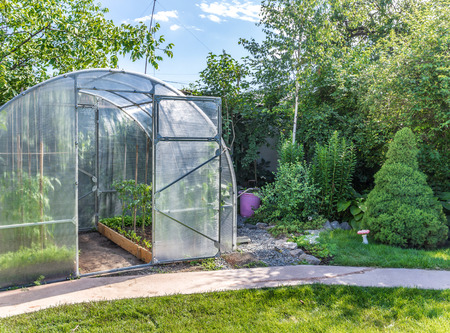 Greenhouse in back garden with open door