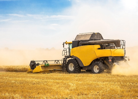 Combine harvester harvesting wheat on sunny summer day photo