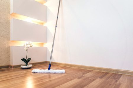 'no people': Modern white mop cleaning wooden floor in house