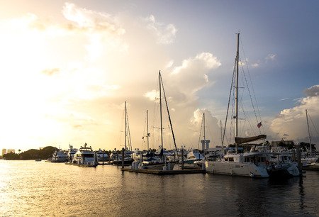 ft lauderdale: Group of yachts berthed in the harbor in Fort Lauderdale, Florida