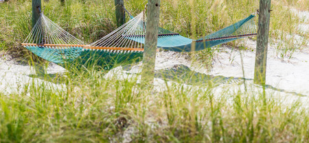 st  pete: Hammock on St. Pete beach, Florida, USA Stock Photo