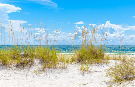 sunny St. Pete beach with sand dunes and blue sky in Florida Stock fotó