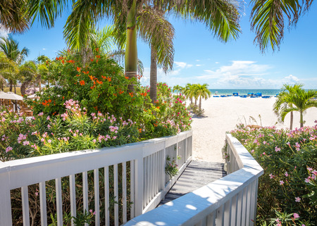 st  pete: Boardwalk on beach in St. Pete, Florida, USA