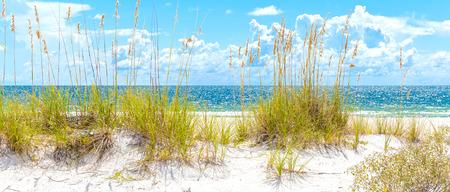 砂丘とフロリダ州の青い空と日当たりの良いセント ピート ビーチ