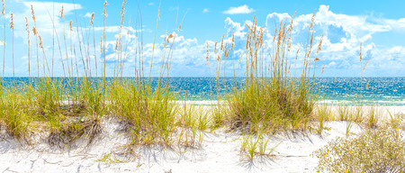sunny St. Pete beach with sand dunes and blue sky in Florida Stock Photo