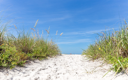 st  pete: sunny St. Pete beach with sand dunes and blue sky in Florida Stock Photo