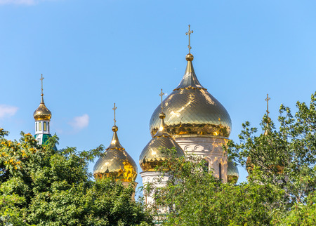 gass: Golden dome of church, view through trees