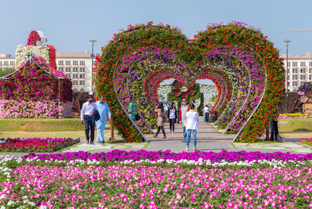 DUBAI, UAE - JANUARY 20: Miracle Garden in Dubai, on January 20, 2014, Dubai, UAE. Beautiful Miracle Garden with 45 million flowers