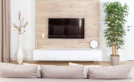 Modern light living room with tv equipment