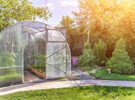 arched small greenhouse on private backyard with sun flare Stockfoto