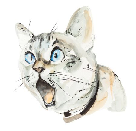 Watercolor head of screaming cat isolated on white background. Angry and surprised animal Archivio Fotografico