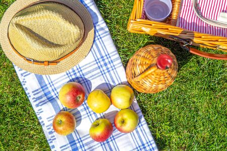 Picnic concept with basket on green sunny lawn in the park