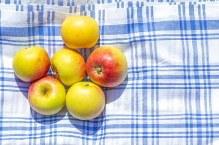 red and yellow apples on a cloth and green grass in a park, copy space