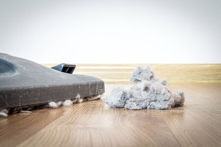Dust and dirt on a wooden floor with vacuum cleaner