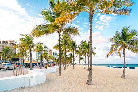 Fort Lauderdale, Florida, USA - September 20, 2019: Seafront beach promenade with palm trees on a sunny day in Fort Lauderdale 新闻类图片