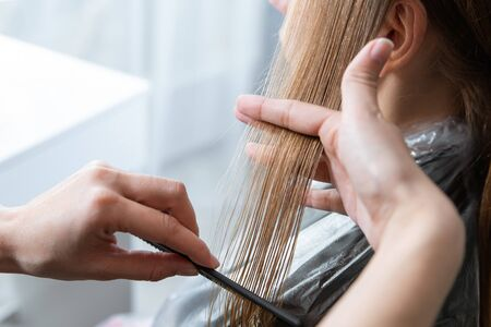 Hairdresser cut hair of a blonde young woman in hair salon