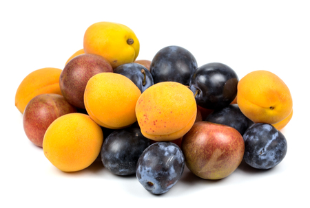 Apricots and plums on white background