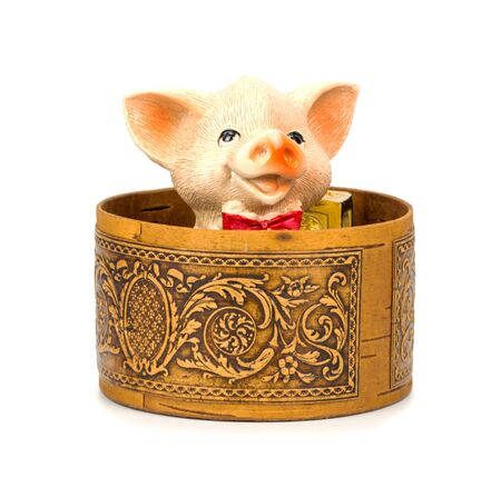 Piglet in a box on a white Standard-Bild