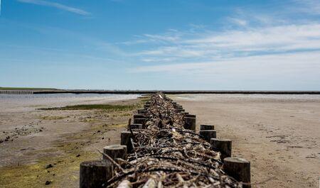 north sea. low tide