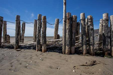 Dutch landscape, North sea sandy beach during low tide