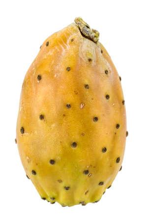 prickly pear on white background 版權商用圖片