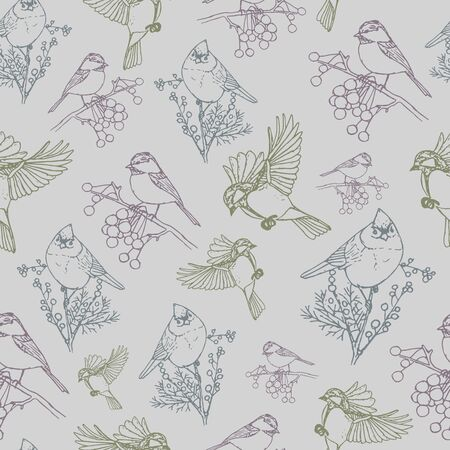 Vector pattern with colorful birds grey background