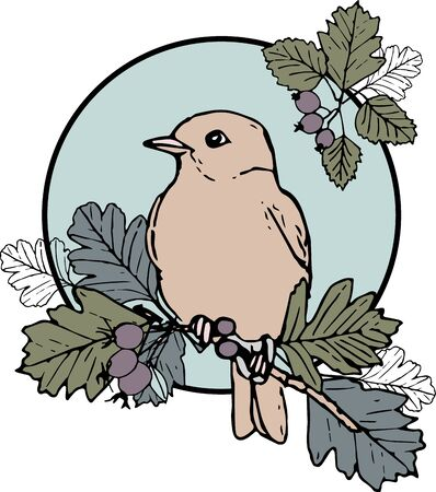 Cute hand-drawn illustration with a bird sitting on a branch. Vintage style. A placement print to Bird and Berries collection patterns. Illustration